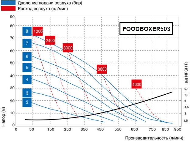 FOODBOXER503-graph